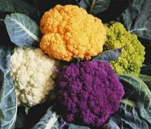 Виды капусты цветная